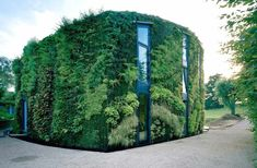 living walls are all the trend now - this one is rather spectacular.