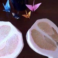 Grapefruit & origamis
