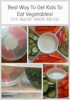 New Nostalgia – The Perfect Vegetable Tray-Keep It Full In Your Refrigerator & Watch Your Kids Devour Their Vegetables!