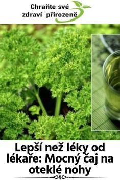 Lepší než léky od lékaře: Mocný čaj na oteklé nohy Parsley, Medical, Herbs, Gardening, Health, Health Care, Lawn And Garden, Herb, Salud