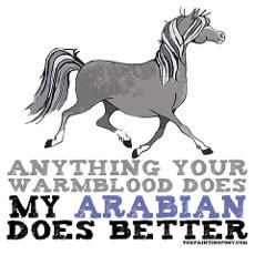 arabian horse photos and quotes | Arabian Horse Poster