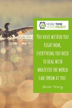 You have within you right now, everything you need to with whatever the world can at you. Brian Tracy, Right Now, Stand Up, Entrepreneurship, Business Tips, Everything, Canning, Motivation, World