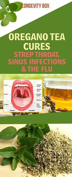 Oregano Tea Cures Strep Throat, Sinus Infections & The Flu – Buzzhome World - Women Health Tips Healthy Diet Tips, Good Health Tips, Health And Fitness Tips, Healthy Living Tips, Fitness Plan, Healthy Lifestyle, Sinus Infection Remedies, Flu Remedies, Health Remedies