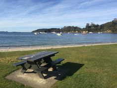 A lazy winter day at Halfmoon Bay, Stewart Island Forest Hill, Winter Day, Amazing Destinations, Picnic Table, Sun Lounger, New Zealand, Lazy, Relax, Island
