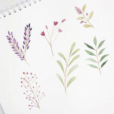 More botanicals