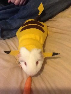 Mommy made me this costume she calls me the pigachu