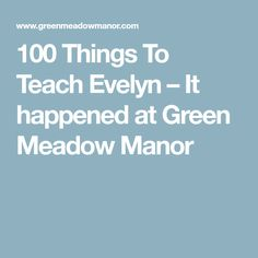 100 Things To Teach Evelyn – It happened at Green Meadow Manor