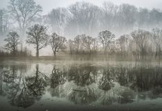 I Captured These Double Exposure Landscapes Using Only My Camera | Bored Panda