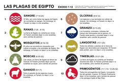 The 10 plagues sent on Egypt in Exodus PDF version KB) Exodus Bible, Book Of Exodus, Plagues Of Egypt, 10 Plagues, Sunday School Lessons, Bible For Kids, Bible Stories, Bible Lessons, Bible Scriptures