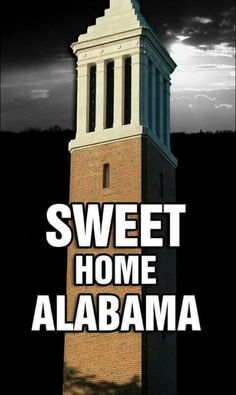 More Crimson Tide Football, Alabama Football, Alabama Crimson Tide, Nick Saban, Sweet Home Alabama, University Of Alabama, National Championship, Roll Tide, Football Season