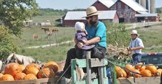 AMISH DISCOVERIES: Amish and Pumpkins