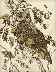 Owl by the talented Teagan White design & illustration Gravure Illustration, Owl Illustration, Illustrations, Owl Art, Bird Art, Great Horned Owl, Ouvrages D'art, Birds, Art Prints