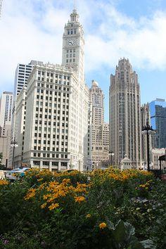 The Chicago Skyline - http://www.1pic4u.com/blog/2014/09/29/the-chicago-skyline-7/