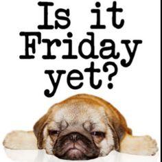 Friday?
