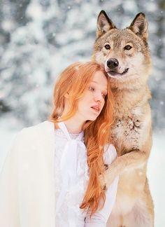 by katerina plotnikova  wolf
