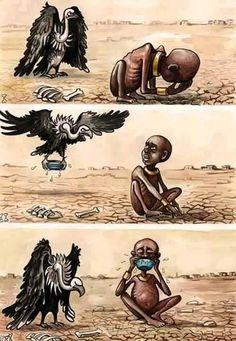 Los animales siempre nos dan lecciones.