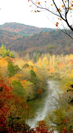 The Toccoa River Canoe Trail is perfect for beginners who are looking for a few rapids and some beautiful scenery along the way. The trail is also popular with float fishermen looking for cold-water mountain trout. The put in is located at the Blue Ridge Ranger District's Deep Hole Recreation Area, a U.S. Forest Service campground of highway GA 60 south of Blue Ridge and north of Suches, GA.