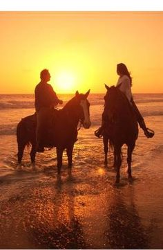 Go horse back riding at sunset on a beach.