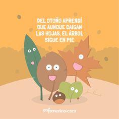 ¡Ya está aquí el otoño! ¡A disfrutarlo! #frasedeldia