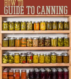 How to Guide to Canning - Canning Jars    Survival Prepping Ideas, Survival Gear, Skills & Preparedness Tips - Survival Life Blog: survivallife.com #survivallife