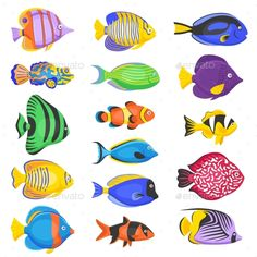 Buy Exotic Fish Set by macrovector on GraphicRiver. Exotic tropical fish set in different shapes and colors flat isolated vector illustration. Editable EPS and Render in. Colorful Fish, Tropical Fish, Neon Tetra, Fish Drawings, African Cichlids, Exotic Fish, Fish Art, Aquarium Fish, Freshwater Aquarium