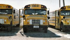 The Home of the Yellow and Black Since Old School Bus, School Buses, School Stuff, Back To School, Vintage School, Busses, Big Family, Car Show, Carpenter