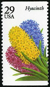 29c Hyacinth single