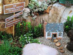 Perennial miniature garden display Perth, Perennials, Miniatures, Display, Garden, Outdoor Decor, Floor Space, Garten, Billboard