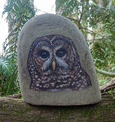 Conte pencil drawing on Nooksack River stone of a Spotted Owl, sprayed with fixative. 3.5x3.75x3 I am inspired by cave art done tens of thousands of