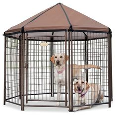 The Dog Gazebo - Hammacher Schlemmer
