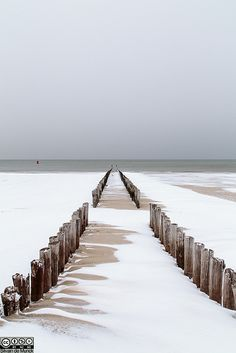 Winter aan het strand, Westkapelle, Zeeland, The Netherlands
