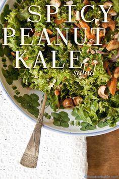 Spicy Peanut Kale Salad | @Susan Salzman | www.theurbanbaker.com