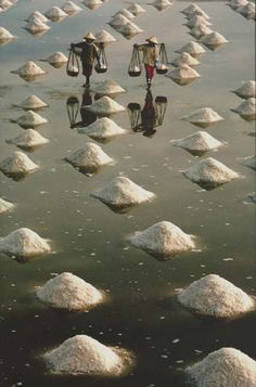 Salt workers in Vietnam (photography, photo, picture, image, beautiful, amazing, travel, world, places, nature, landscape)