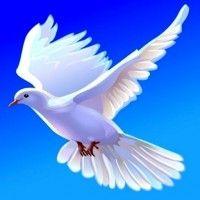 Discernimiento: Espíritus Buenos y Malos