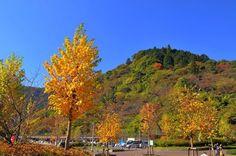 Japan - 奥多摩湖位于东京都西部,是由多摩川上游截流的小河内水库形成的人工湖,秋天的景色很美