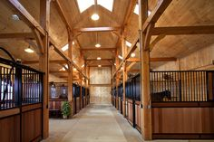 Timber Frames With timber frame large sky windows can be installed and the entire barn is more fresh and open to light.
