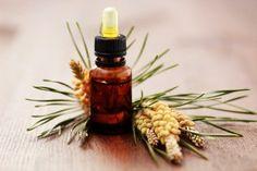 Quels extraits de bourgeons choisir pour soulager les maux de l'hiver?
