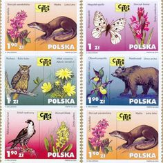 Poland 2001 MNH Set 5 stamps Plants and animals threatened with extinction Owl