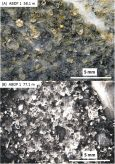 Fig. 5. Macro-photographs of MBCM rock slabs displaying densely packed spherules