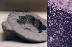 Evidence for drilling in ancient Egypt. Marks in the kings-coffer suggest that it too was hollowed by core-drilling.