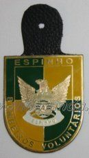 B. V. ESPINHO
