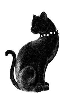 Cat SKU-DA00021