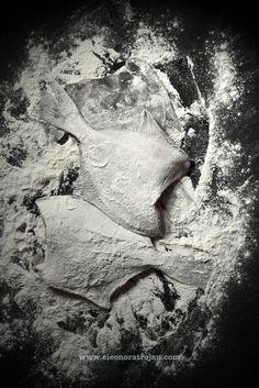 flądra | Eleonora Trojan