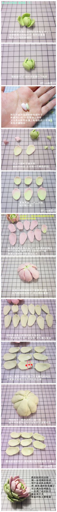 【多肉粘土教程】粘土多肉 露娜莲(下) by…-堆糖,美好生活研究所