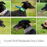 Crystal Wolf Dog Collars - At Crystal Wolf, our mission is to produce custom made, high quality, unique collars and accessories, to dogs of all shapes and sizes, that aren't afraid to add a little glamour and attention to their lives.