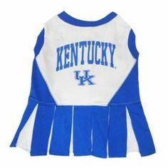 Kentucky Wildcats Dog Cheerleader Outfit