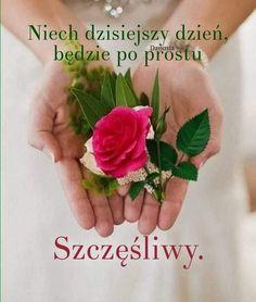 Beautiful Rose Flowers, Good Morning, Hummingbird, Puzzle, Facebook, Disney, Funny, Frases, Beautiful Landscape Photography