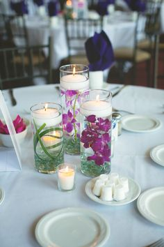 Orchids and lily Grass Cylinder Centerpieces, Floating Candles, Orchids, Grass, Reception, Lily, Table Decorations, Flowers, Decorating Ideas