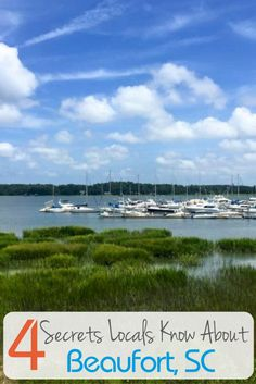 Here are four of the best kept secrets I learned from the locals in Beaufort, SC. But remember, you didn't hear them from me.