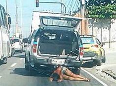Crime - The 360 Experiment Police Cars, Brazil, Crime, Woman, Women, Crime Comics, Fracture Mechanics